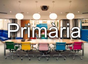 Mestres Primària Campus Virtual